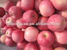 2012 Yantai Blush Red Fresh Fuji Apples Of Qixia Apple Fruit