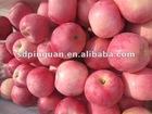 2012 Yantai Blush Red Fresh Fuji Apples Of Qixia Apple Fruit