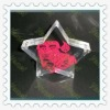 star shape acrylic promotion products