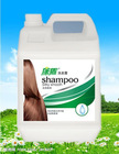 1000ml Women hair shampoo 2in 1 in bulk