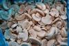 frozen mushroom flakes