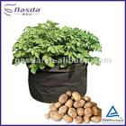 Non-woven plant grow bag