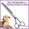 OEM Professional Super Star Pet Scissors