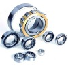 Singer row cylindrical roller bearing NJ2313M