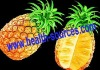 pineapple extract powder with main activity bromelain