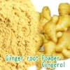 Ginger Extract Powder/Gingerol