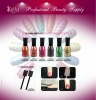 NEW ARRIVAL Magnetic Nail Polish