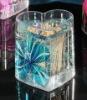 acrylic toothpick box
