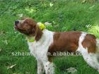 waterproof dog hunter beeper