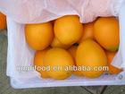 fresh navel orange 2012-2013