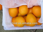 fresh navel orange 2012-2013