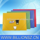 Manufacture best quality offset printing plastic file folder