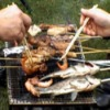 BBQ grill mesh (barbecue grill wire netting, barbecue mesh)