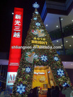 outdoor huge christmas tree