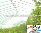 Polypropylene non-woven fabric for agriculture