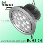 LED Ceiling light 15*2W