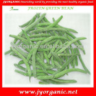IQF Green bean with haccp