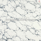 1200x1200mm Big Size Polished Porcelain Tile, Homogeneous Tile Flooring (HPW11208)