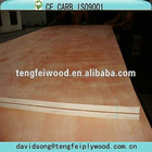 plywood for wooden container house