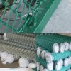 FuBu Layer Poultry Cages