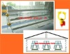 TAIYU Design&Equipment battery cages