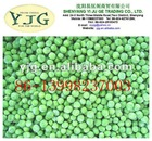 good price frozen green soya bean factory export directly