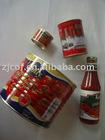 tomato paste & tomato ketchup