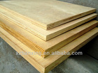 Tianxing Wood Fancy Bintangor Phenolic WBP Waterproof Plywood Veneer Plywood russian Birch Plywood Poplar Rotary Cut Veneer