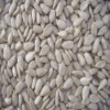 bakery grade sunflower kernel