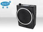 Ufh wireless voice amplifier