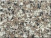 G664 misty brown bainbrook brown cheap China granite tile