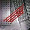 Seperior Quality Perforated/Punch Mesh (ISO9001)