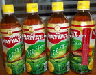 500ml Lemon Flavored Ice Tea Drink in PET Bottle