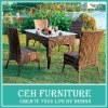 Cheap garden brown rattan table and chair (DH-3021)