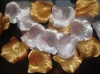 golden and silver wedding rose petals