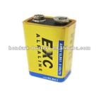 9V Alkaline Battery 6LR61