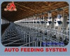 Dry feedstuff livestock feeding and drinking system