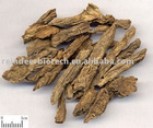 Dipscus Extract Powder