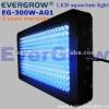 300w light for aquarium plants