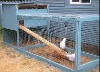 chicken mesh