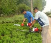 portable gasoline hedge trimmer