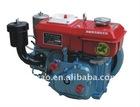 R165 diesel engine