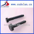 Hex head screw spike of rail accessories