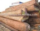 Burma AA teak logs