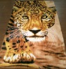 Full Printed Bath Towel