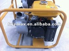 PT 207 Robin Pump
