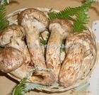 mushroom extract powder polysaccharides 20%~60%