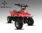 50cc/70cc/90cc/110cc Mini ATV