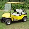 WS-GL2 electric golf car