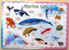 Animal Theme for children education Magnetic puzzle